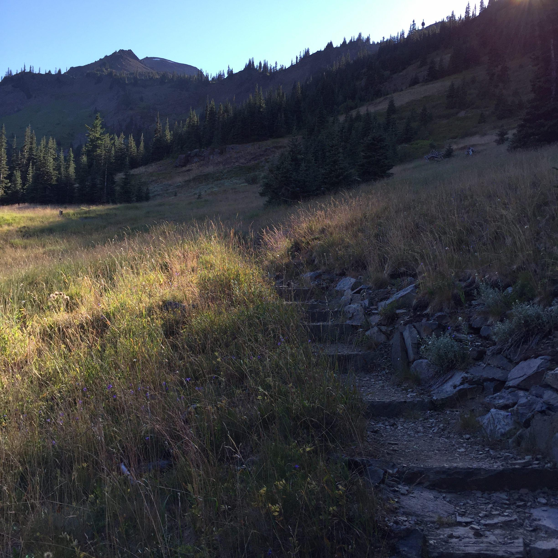 Trail to Moose Lake.jpg