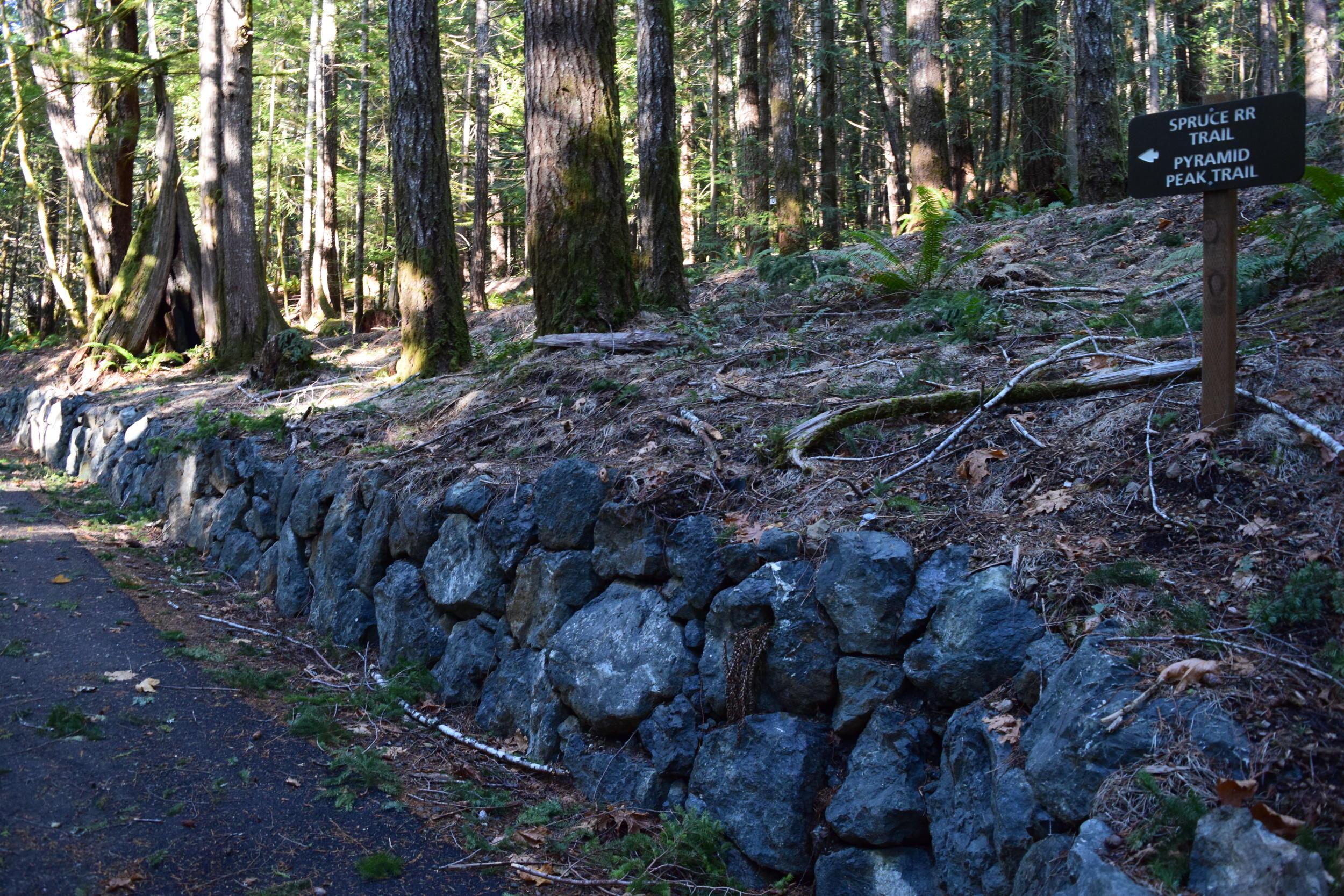 Trailhead Spruce RR.jpg