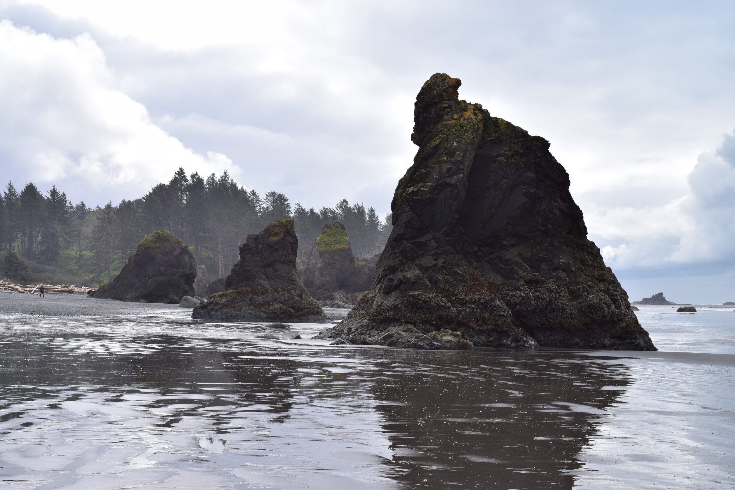Sea stacks at low tide.jpg