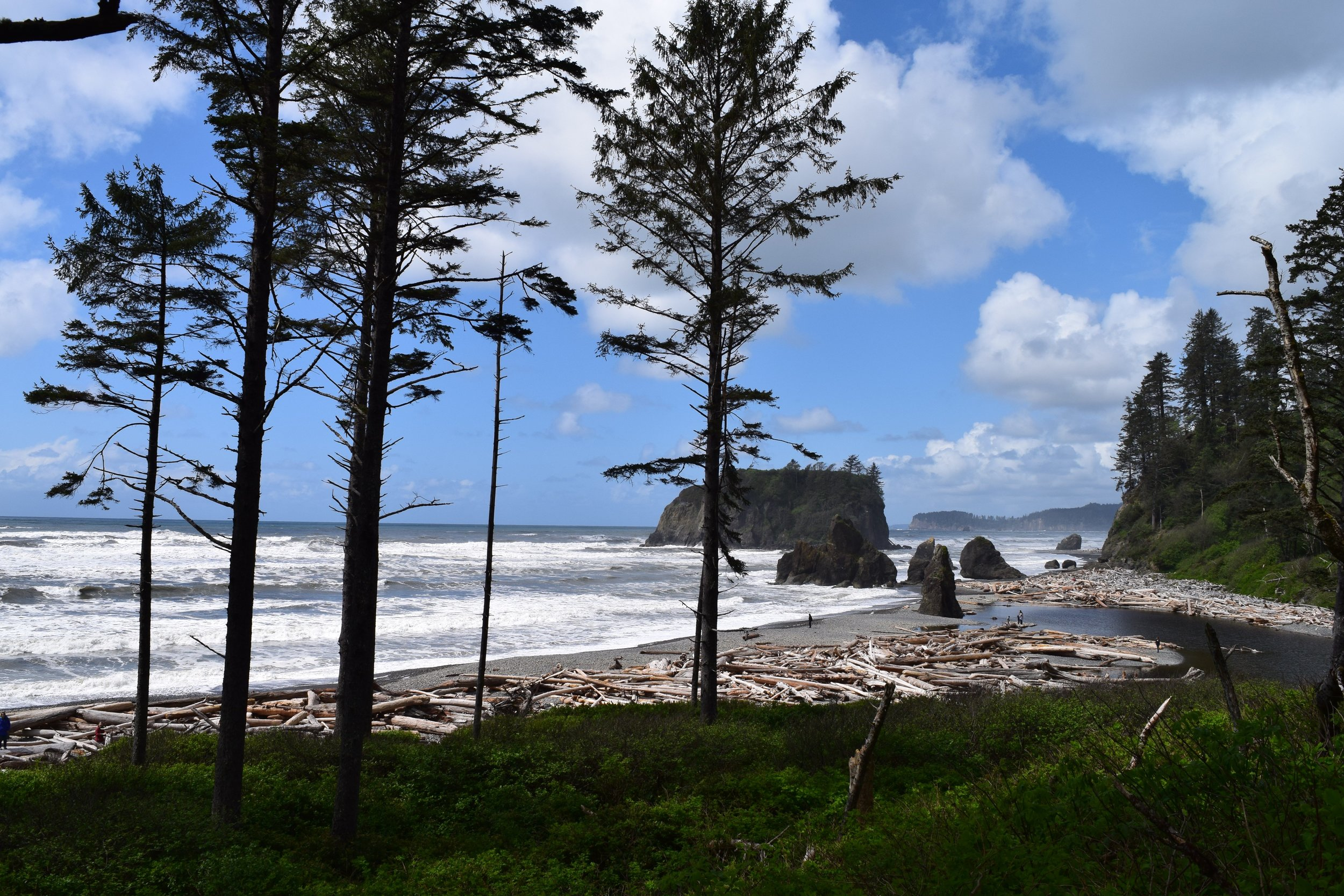 Ruby Beach, Pacific Coast.jpg