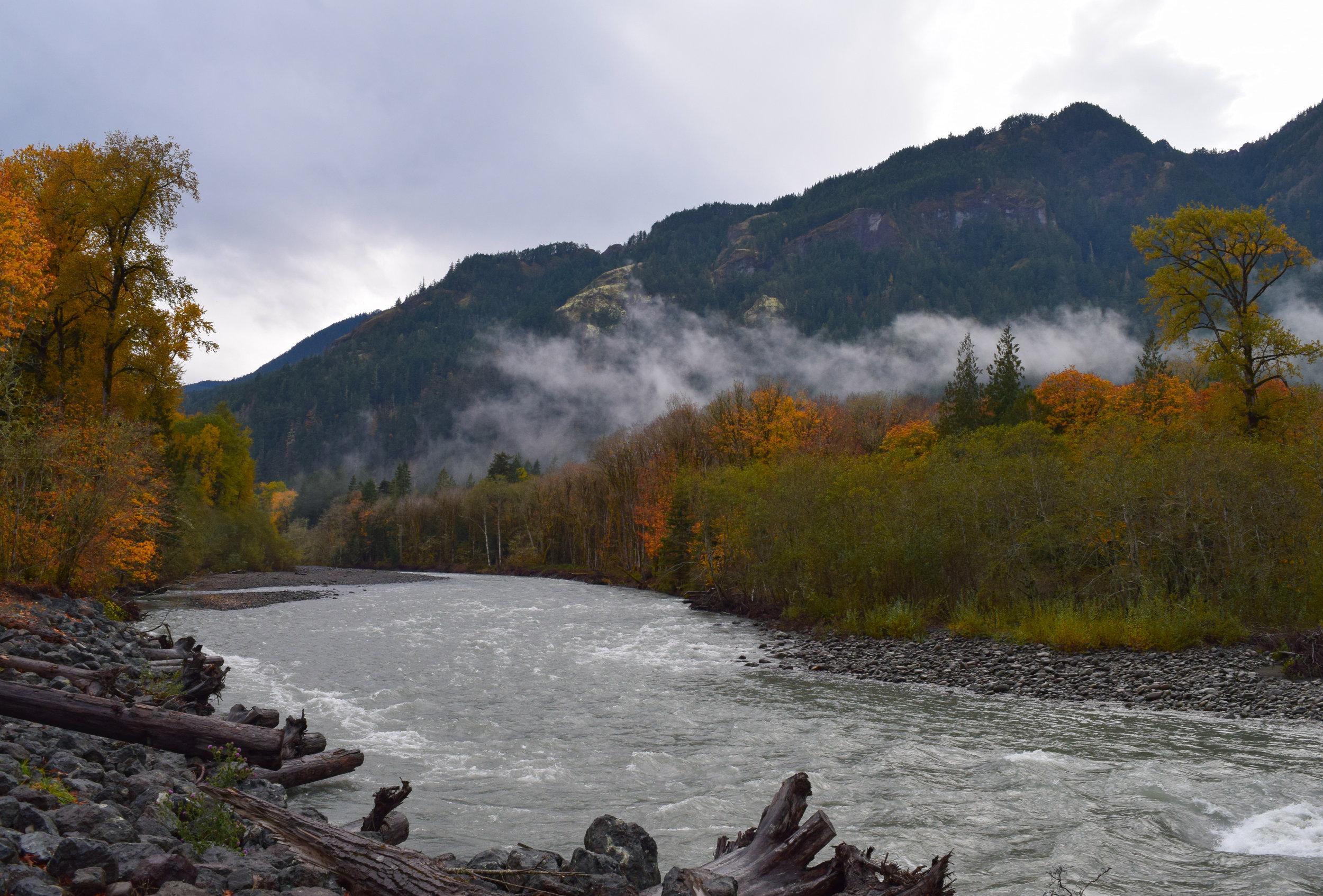 Elwha River Valley Fall Colors.jpg