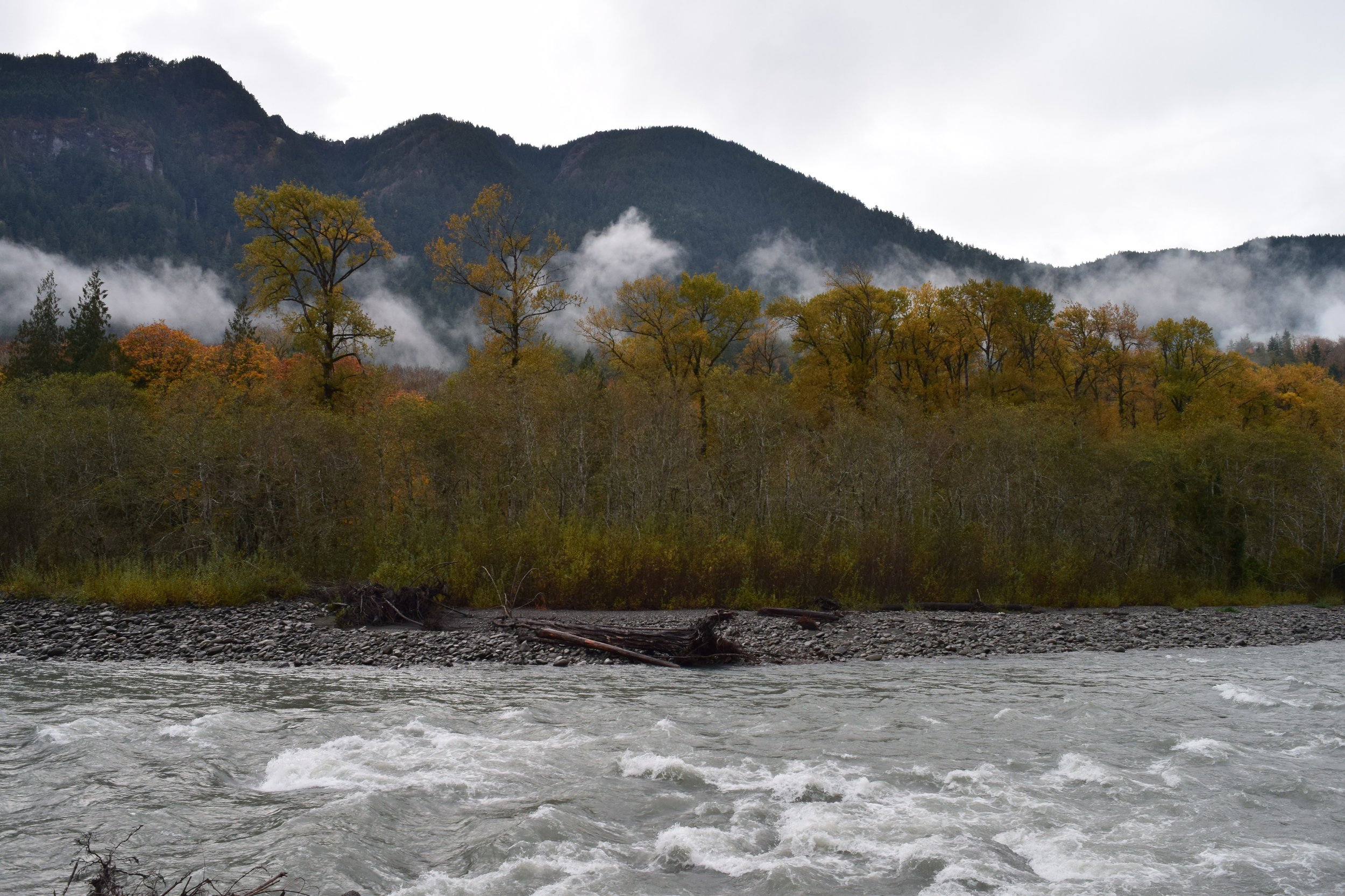 Elwha River Valley & Mountains.jpg
