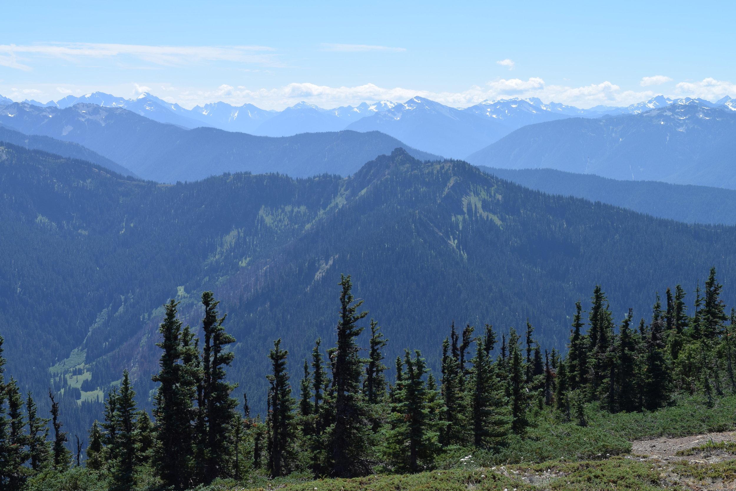 5 - Valleys and Peaks.jpg