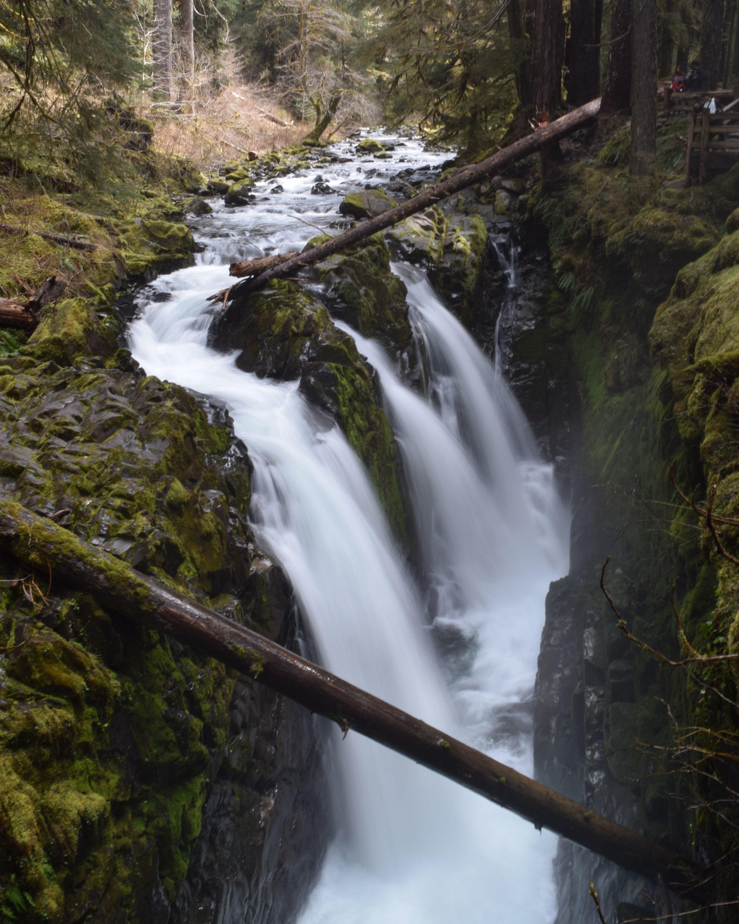 Sol Duc Falls 05-02-18.jpg