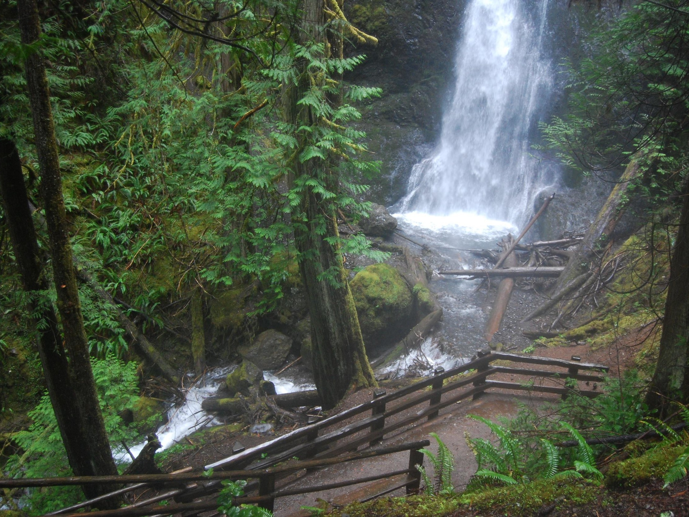 Marymere Falls Olympic National Park.jpg