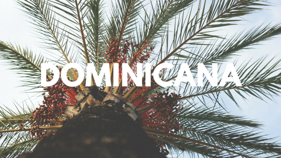 DOMINICANA-2.png