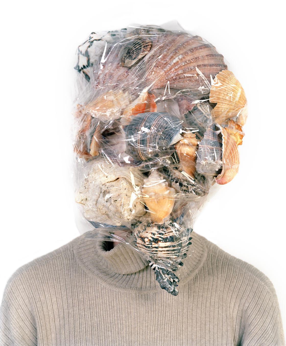 Untitled (seashells) 2006