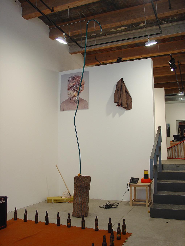 installation-shot-before6-(full-hose-log).jpg