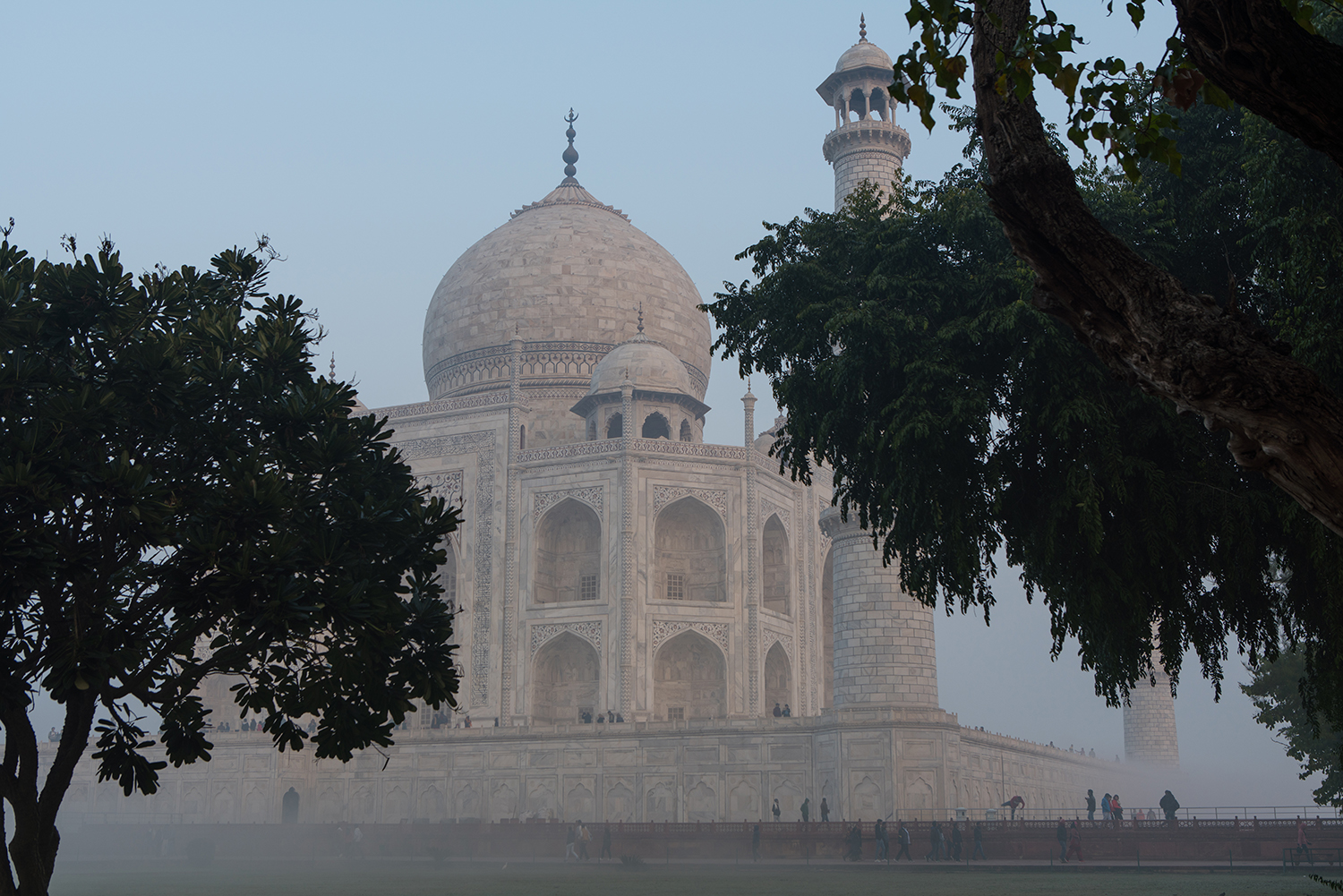 The Taj Mahal through the surrounding trees.