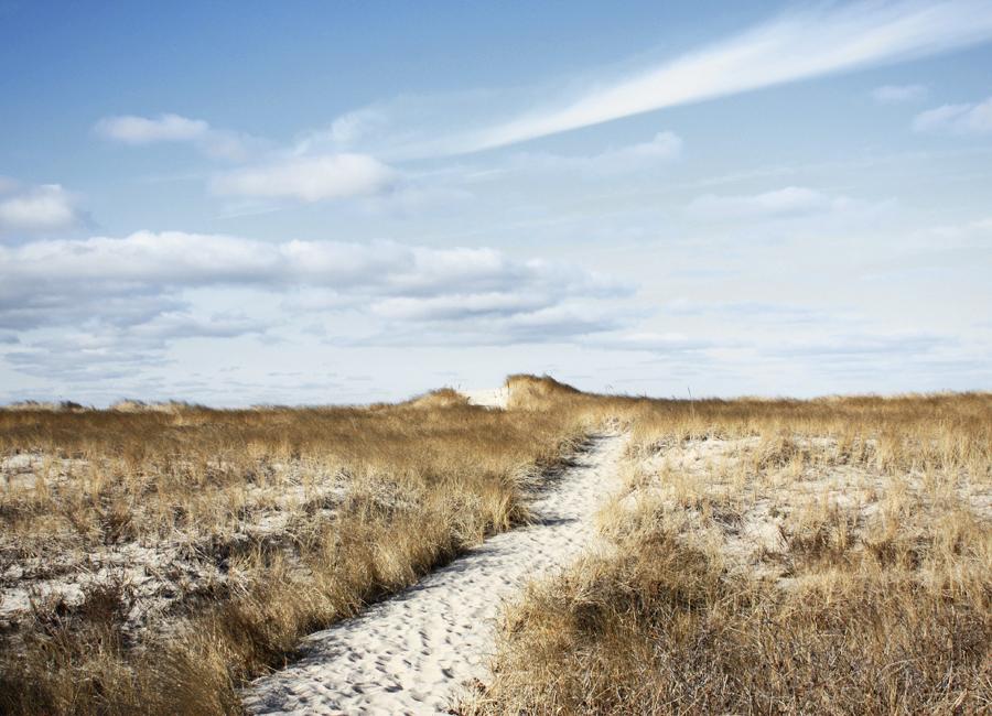 a-path.jpg
