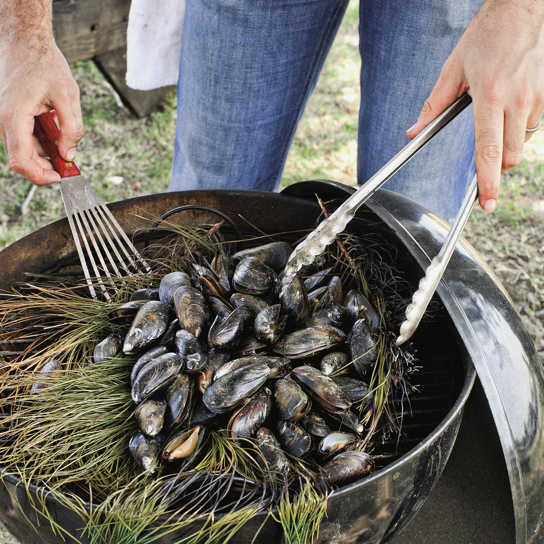 pine bough-grilled mussels with aioli