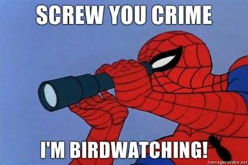 Screw-you-crime-Im-birdwatching