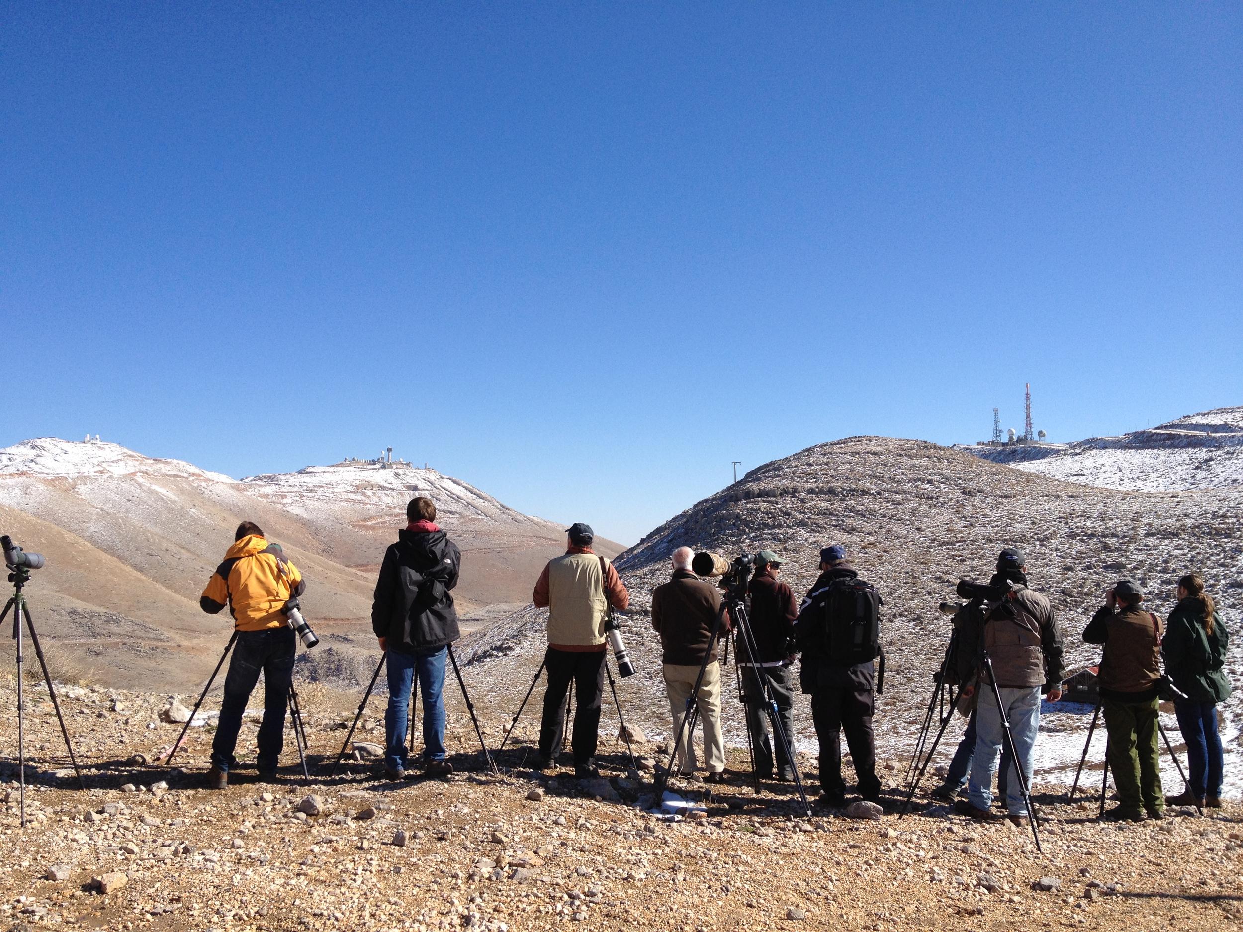 Birders at Mount Hermon.
