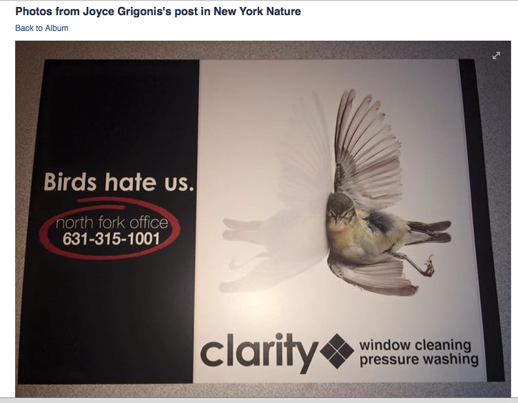 An  unfortunate ad showed up in some mailboxes in New York.  Word on the street is that the owner of the company has since learned this ad was insensitive,  the image used was stolen  and he's very sorry and will never do it again.