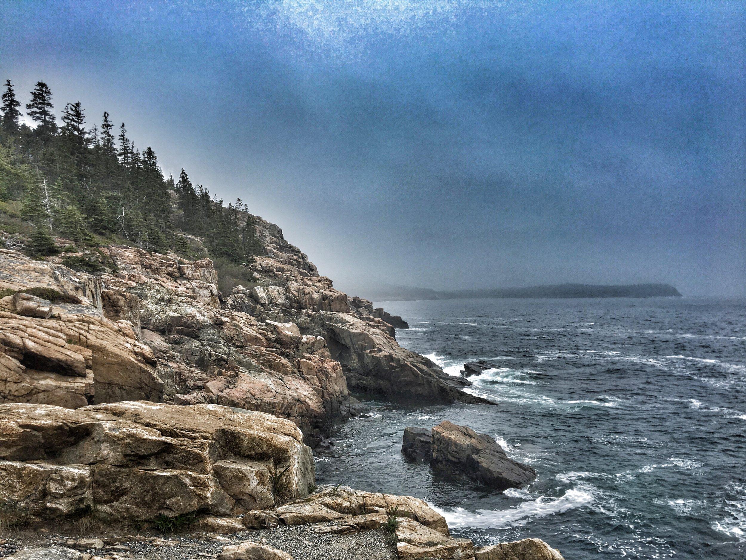 The rocky coast of Acadia National Park.