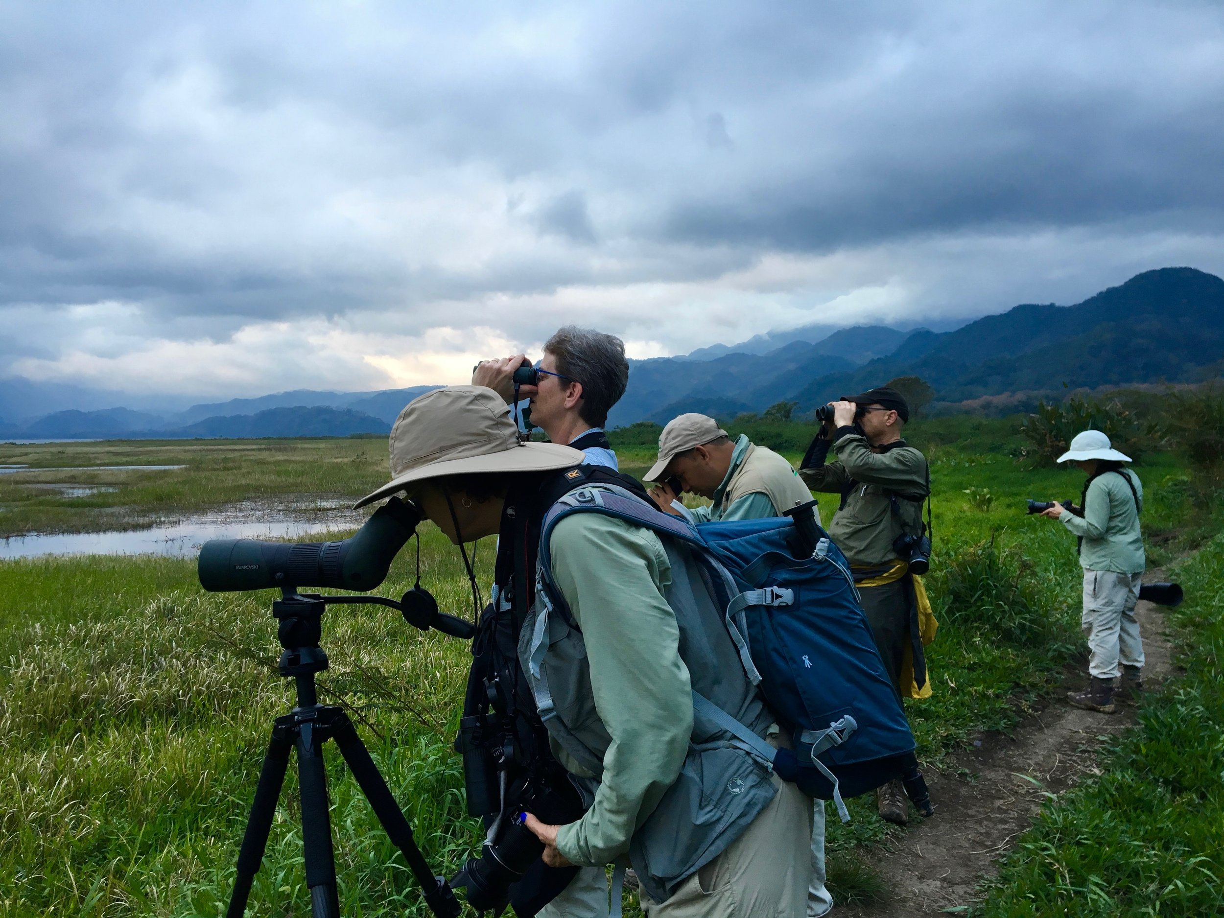 How can you not feel like you're on an adventure while birding in a landscape like that? This was taken at Los Naranjos Eco-Archeological Park.