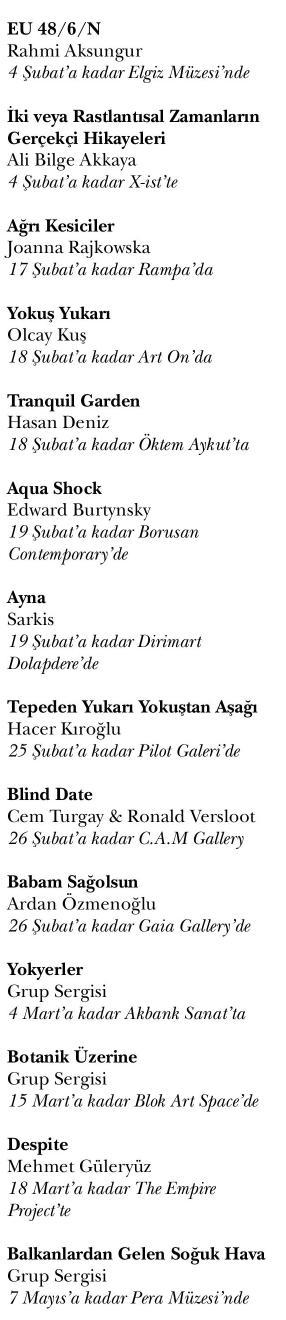 ISTANBUL_ART_NEWS_IAN._CHRONICLE_20170201_24.jpg