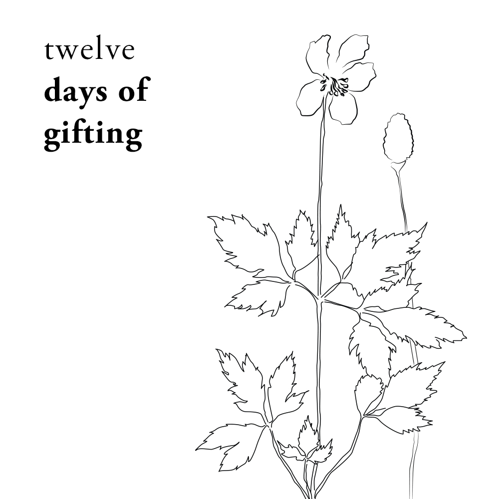 12 Days of Gifting | Of Note Stationers