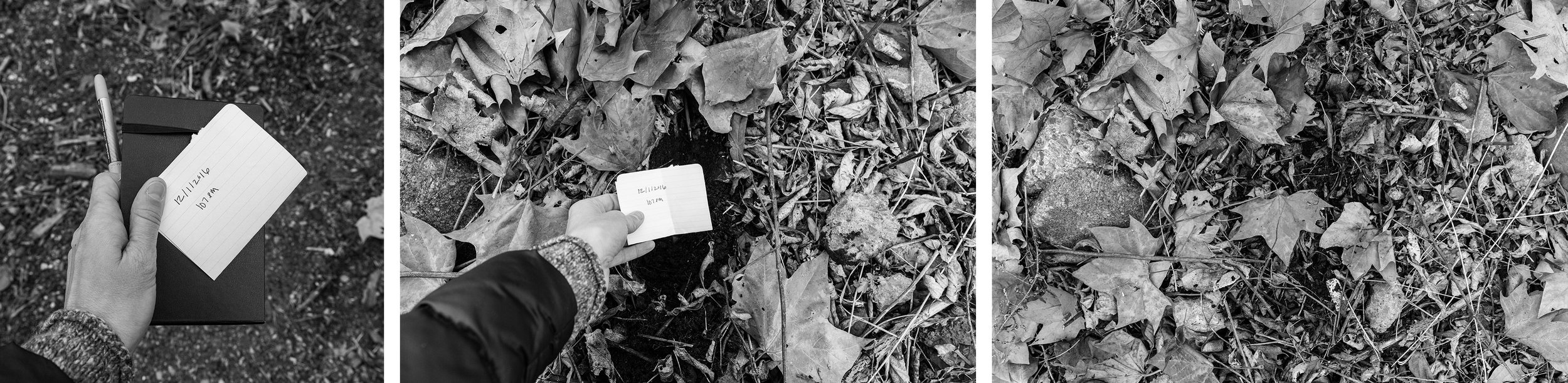 Unrequited Correspondence   Eva Deitch