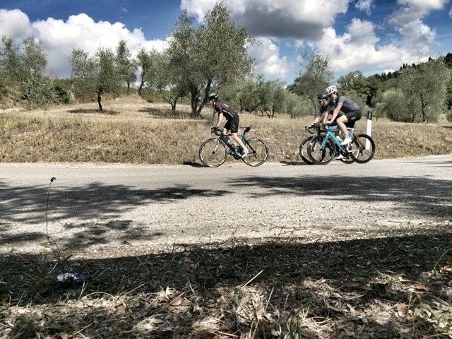 Testa Della Bike Fits