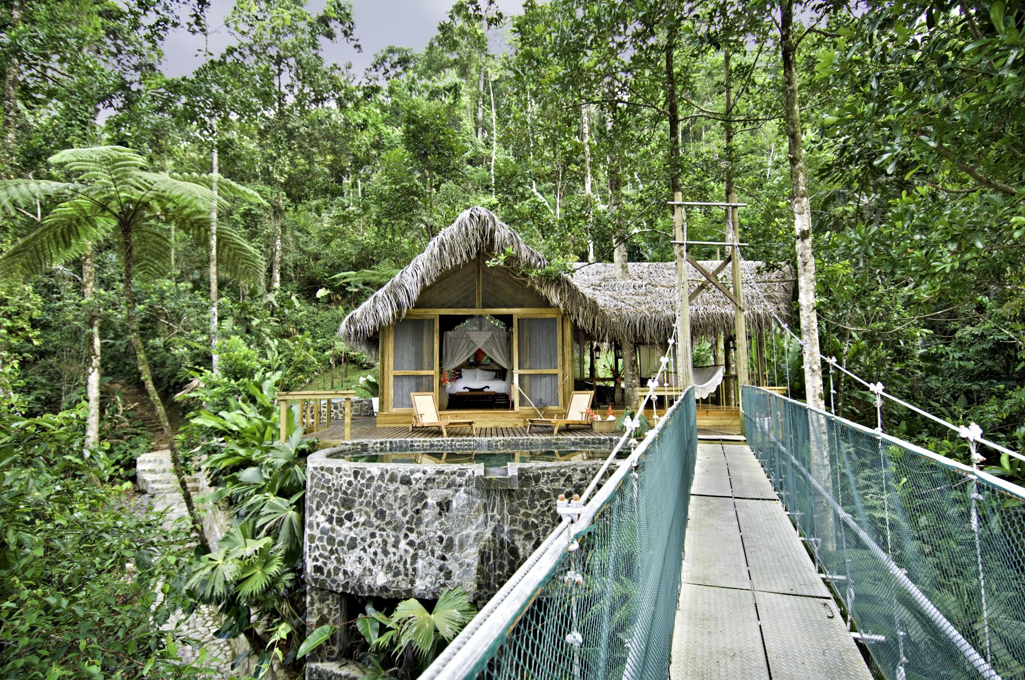 Honeymoon Suite Canopy Pacuare.jpg