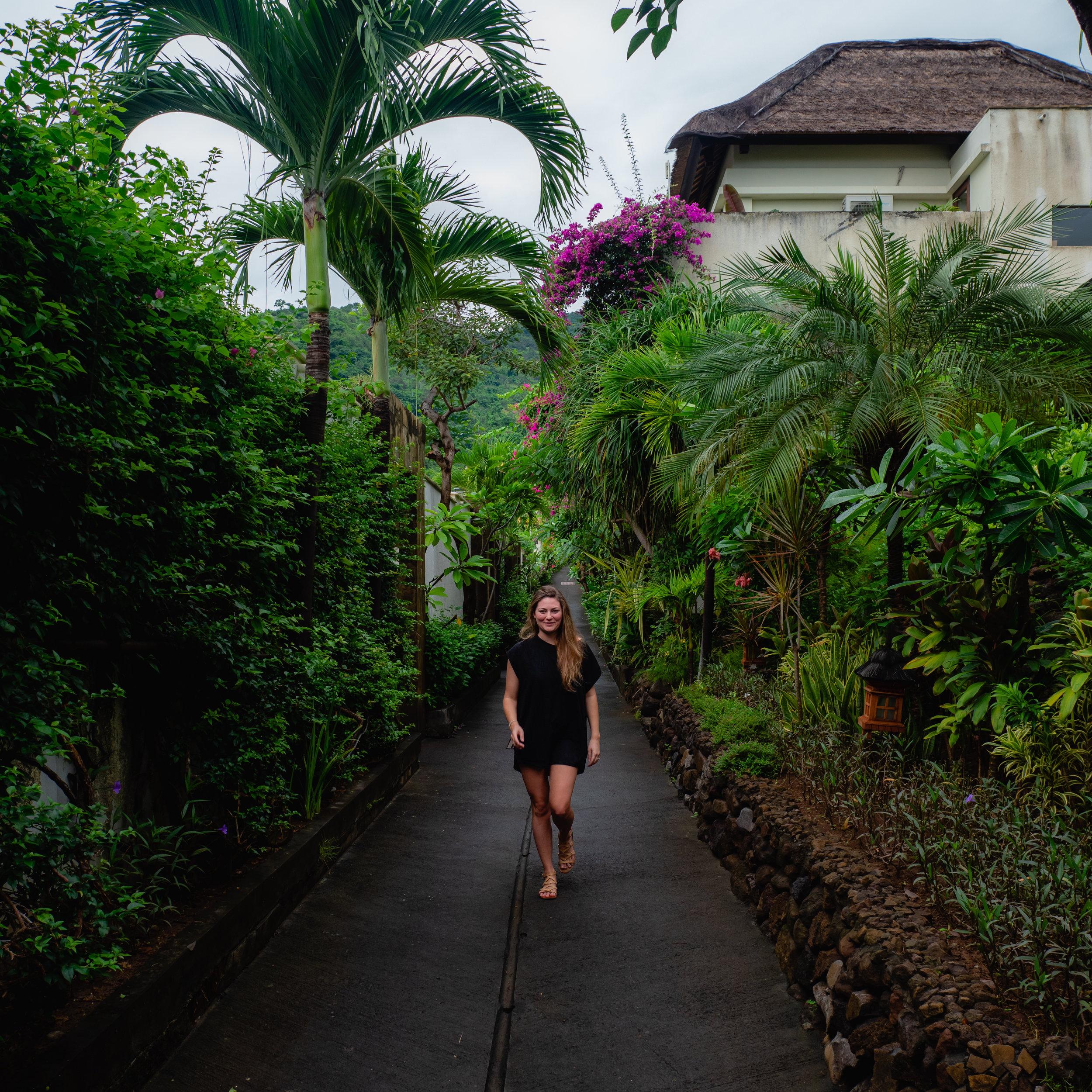 Jungle walking-instagram-4.jpg