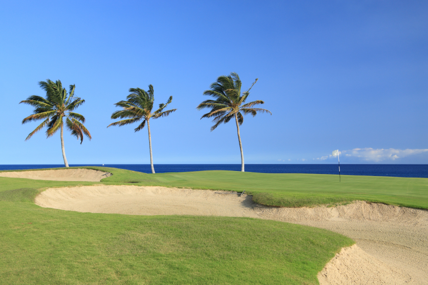 15-iStock_000006686613Small-hawaii-golf-course.jpg