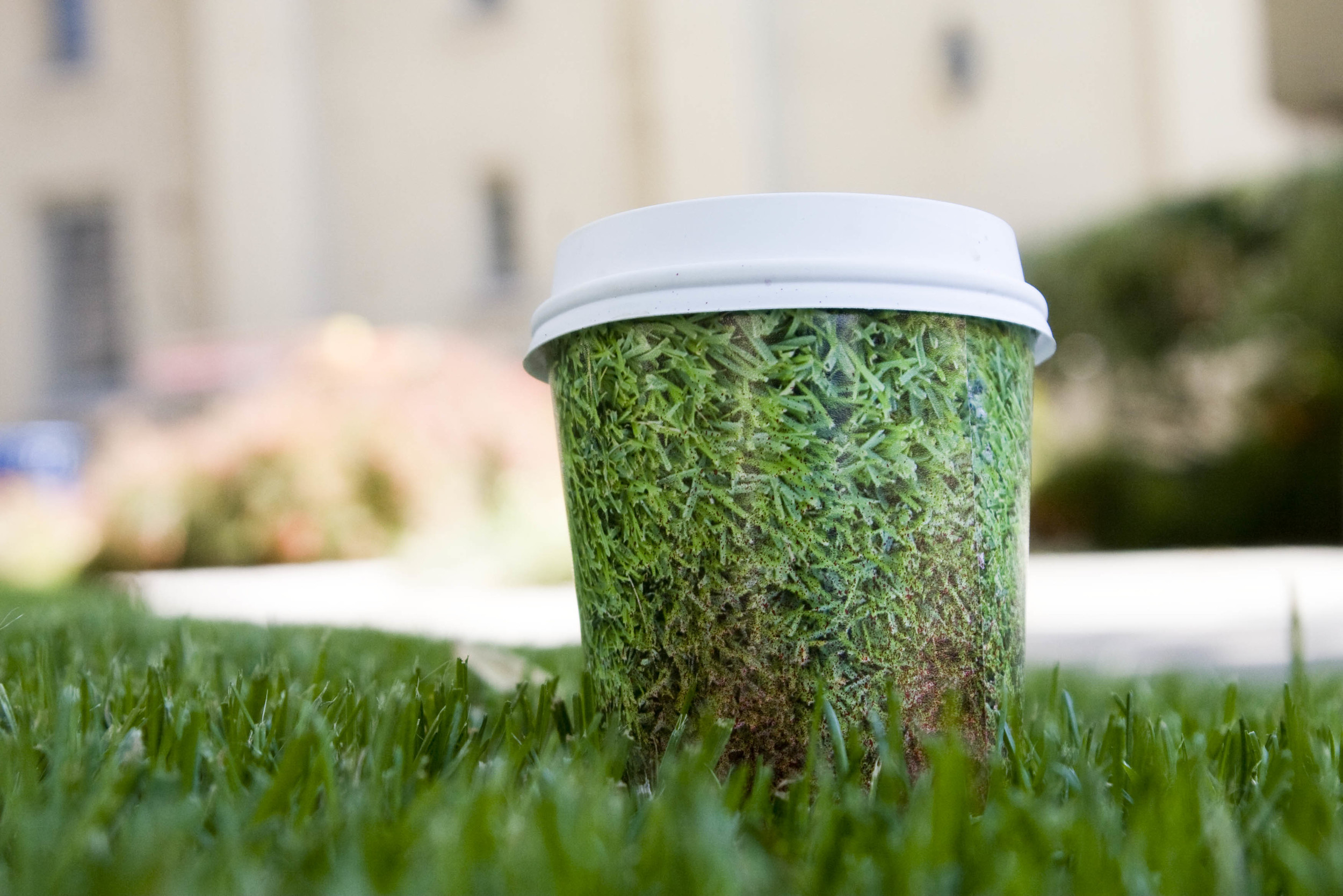 grass cup.jpg