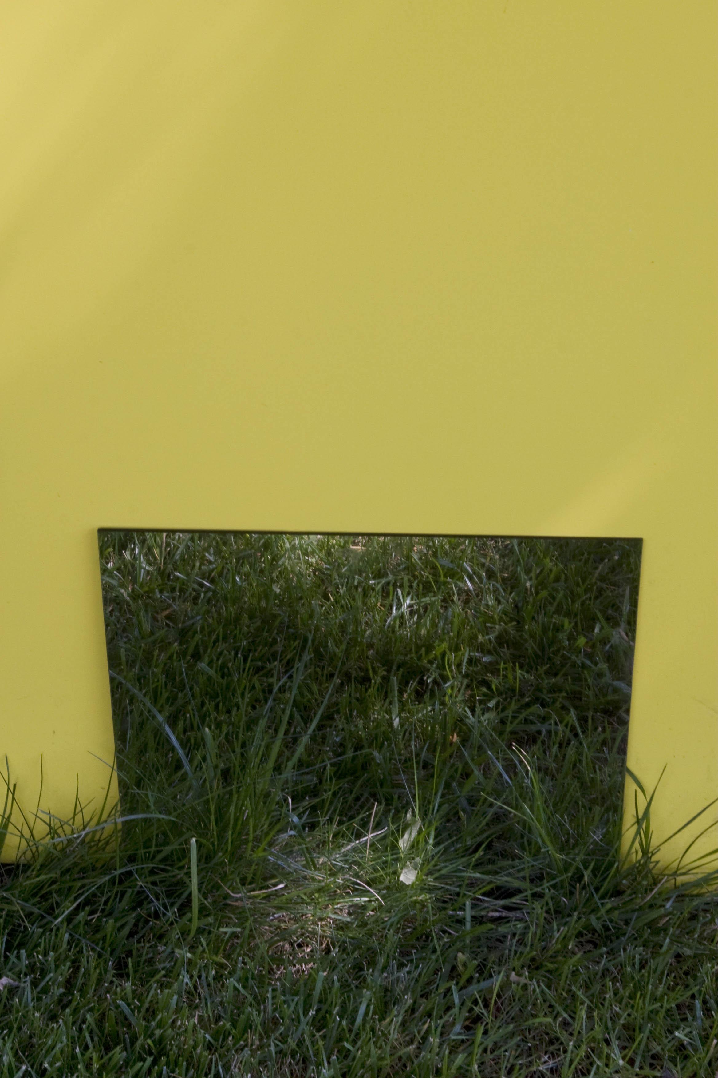 grass mirror.jpg