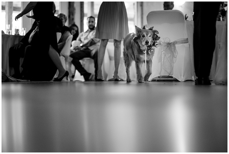 Eureka Springs Wedding-47.jpg