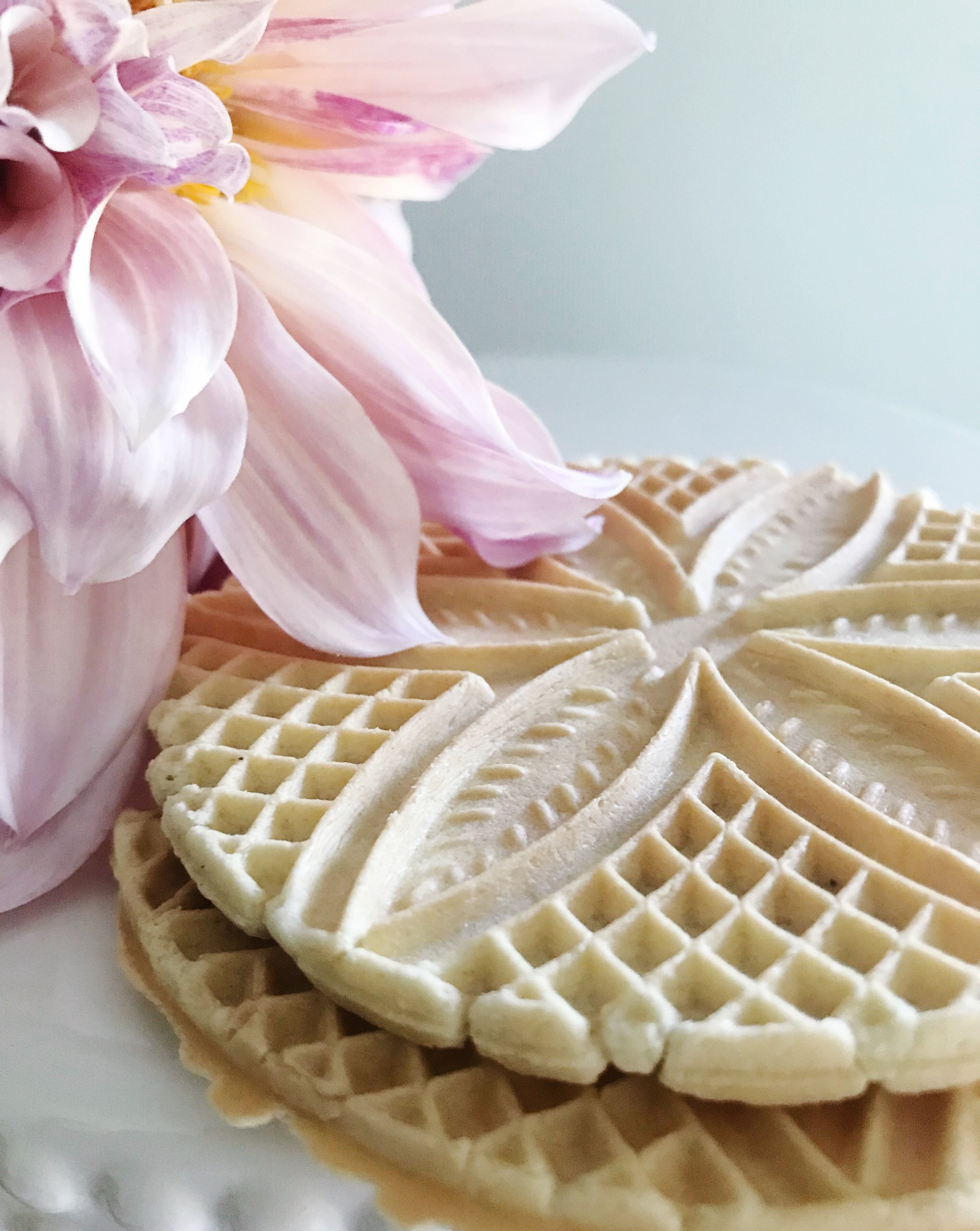 Pizzelles and Dahlias | TetherAndFly.com