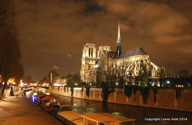 Notre Dame night rear 8x10 crop.jpg