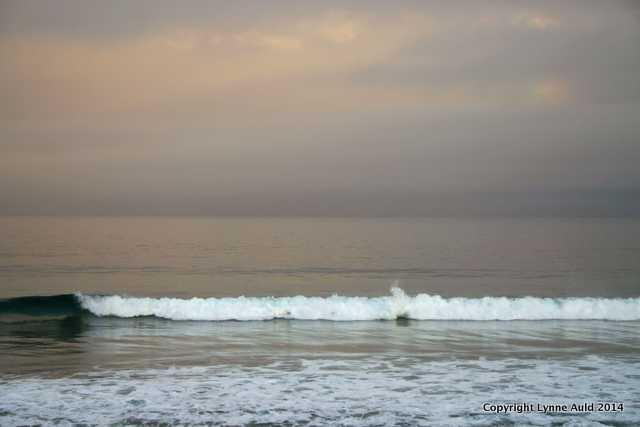First Light, Monterey