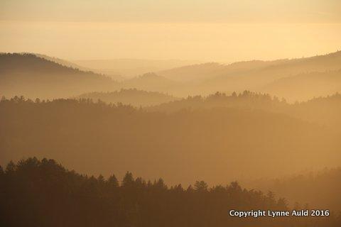 02-Sunset fog RussianRidge.jpg