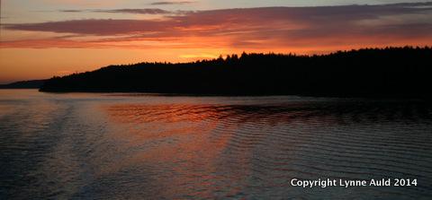11-Orcas sunset pan.jpg