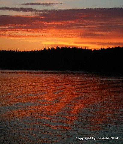 10-Orcas sunset sq.jpg
