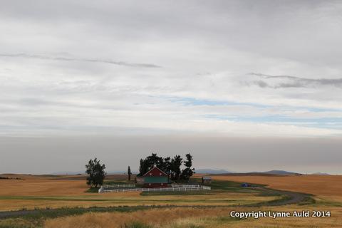 16-Palouse farm.jpg