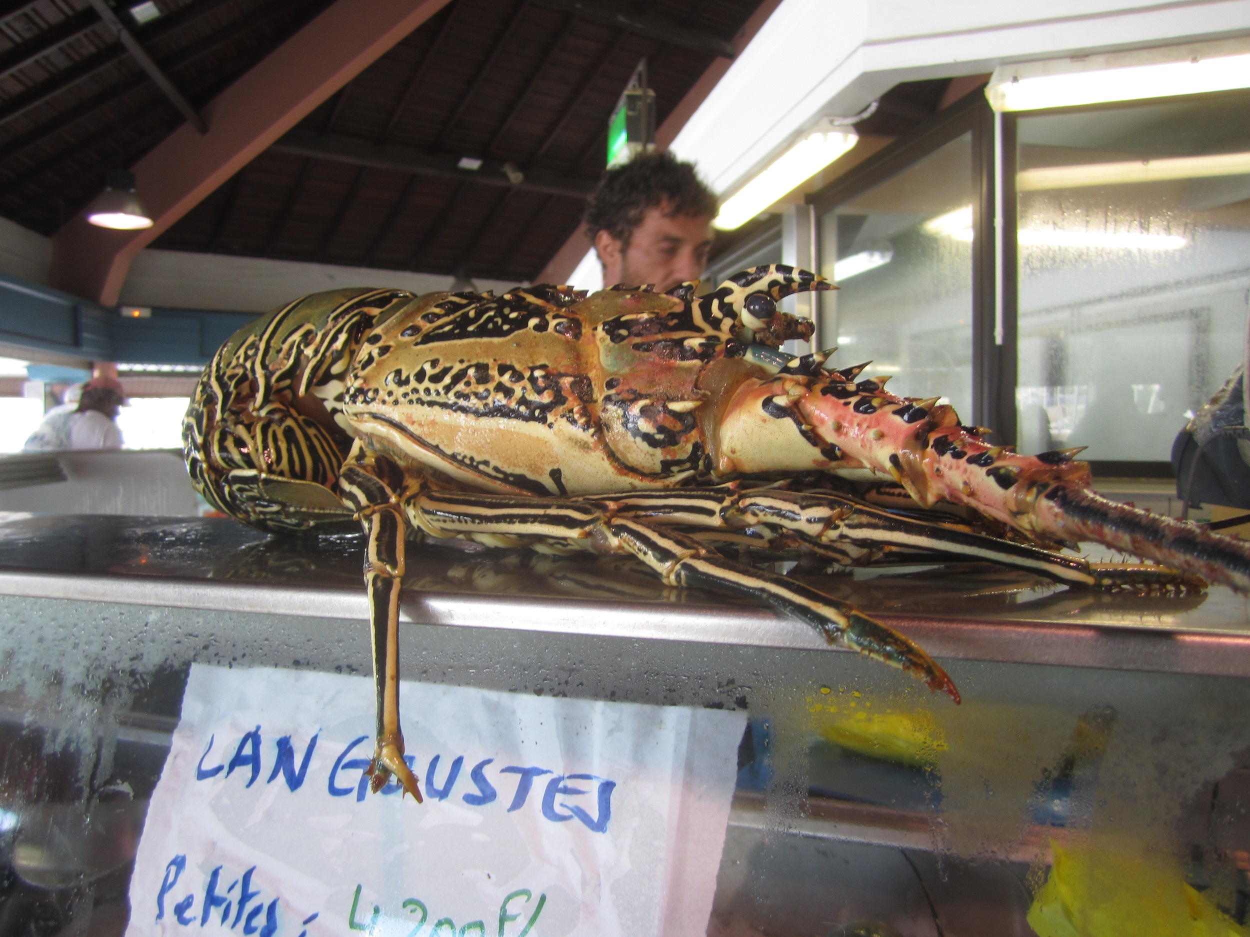 The enticing displays of fresh seafood and produce in the market of Noumea on Grande Terre made us wish we had our own kitchen and more time on the island.