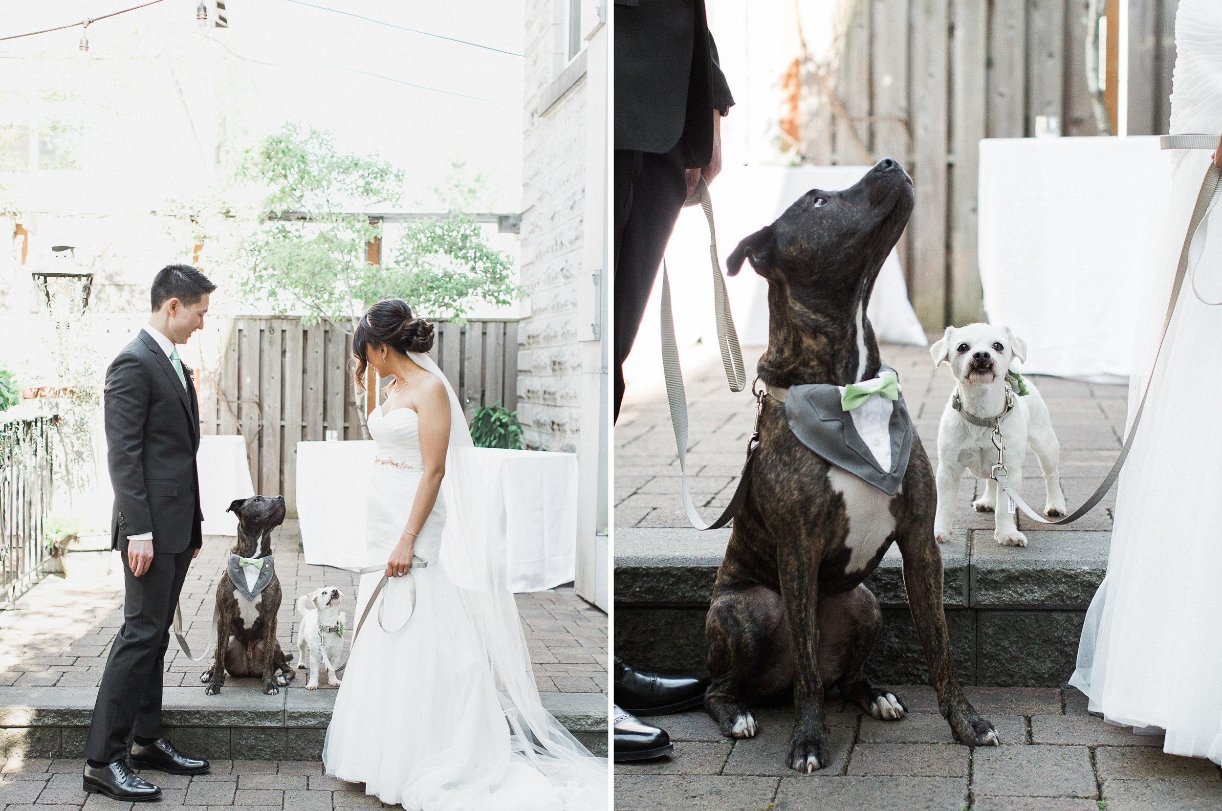 opal-28-urban-portland-greenery-wedding-12.jpg