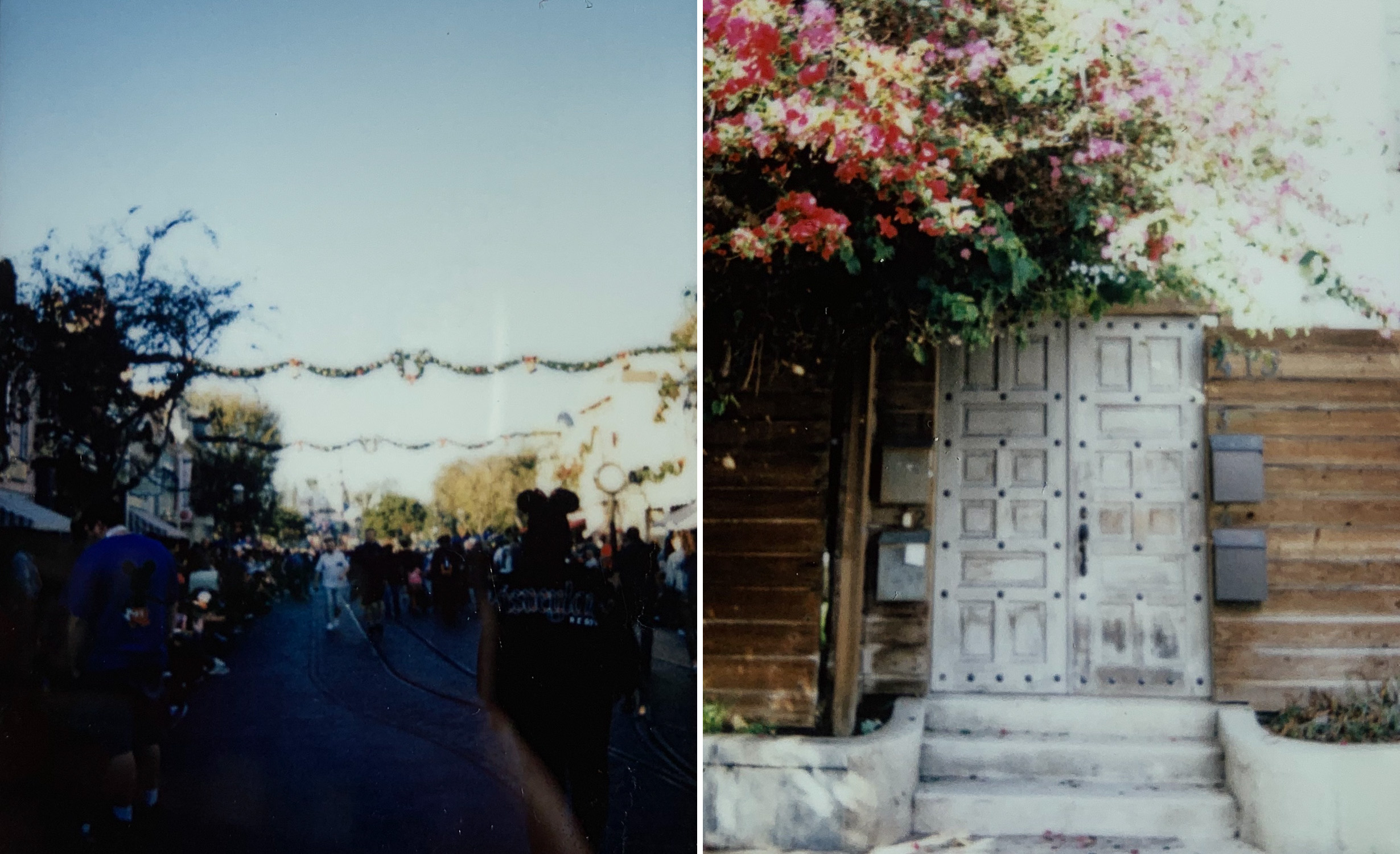 Disneyland on the left and a really cute door in Venice on the right!