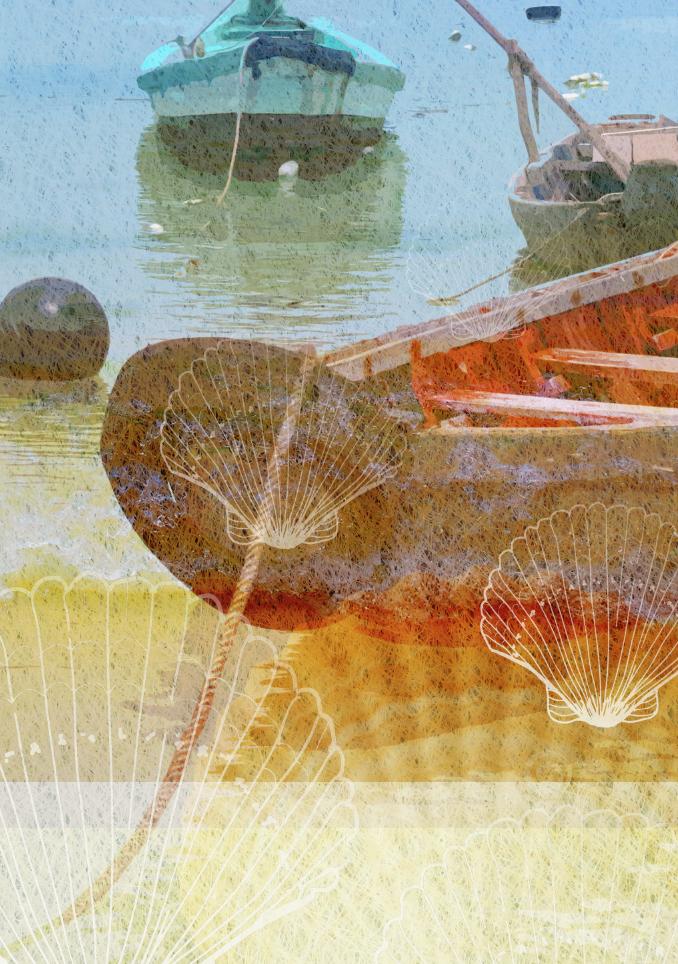 Close Up Boat & Shell