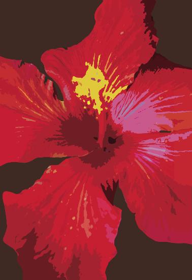 Floral Design 4