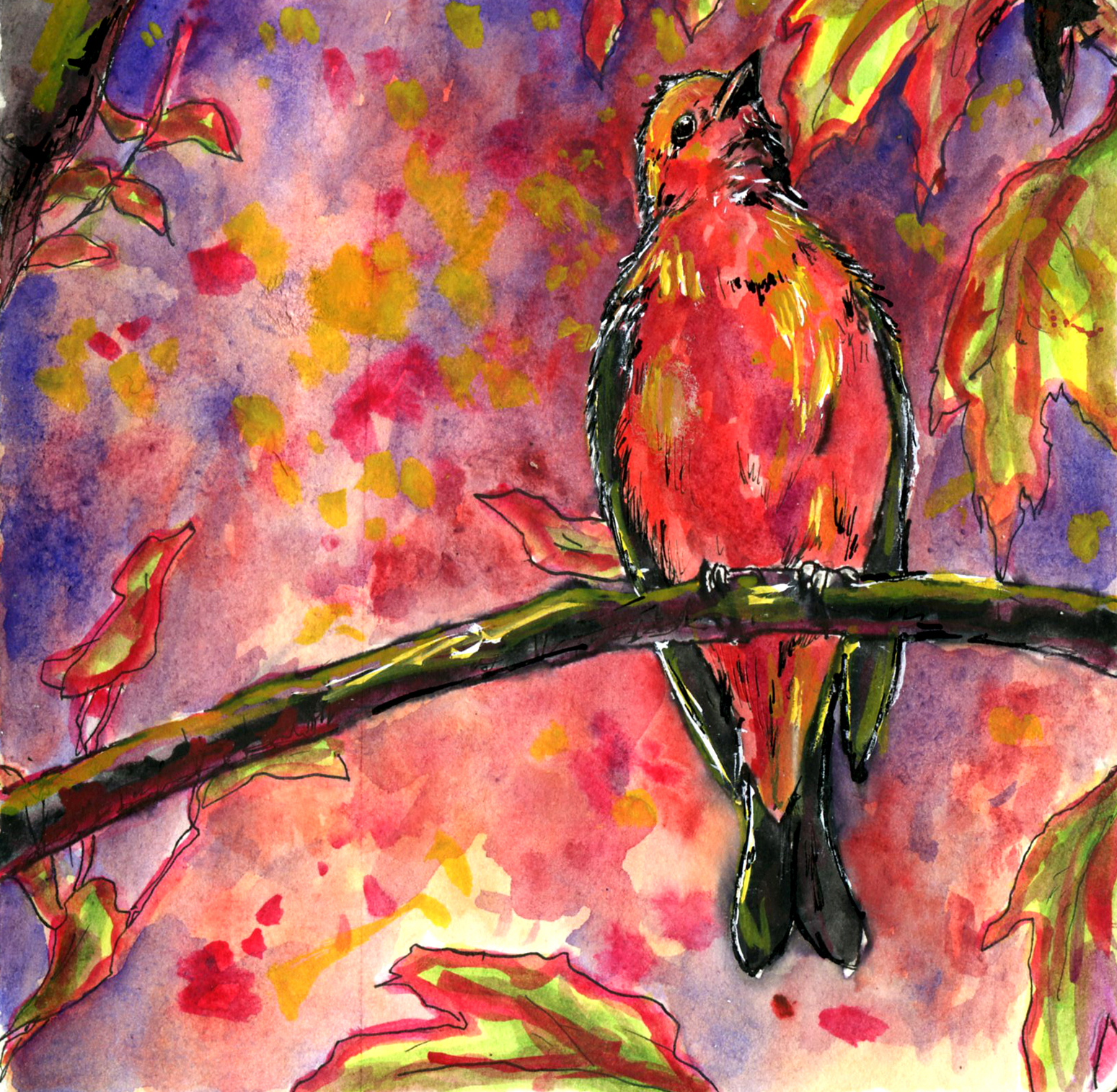 26. Scarlet Tanager