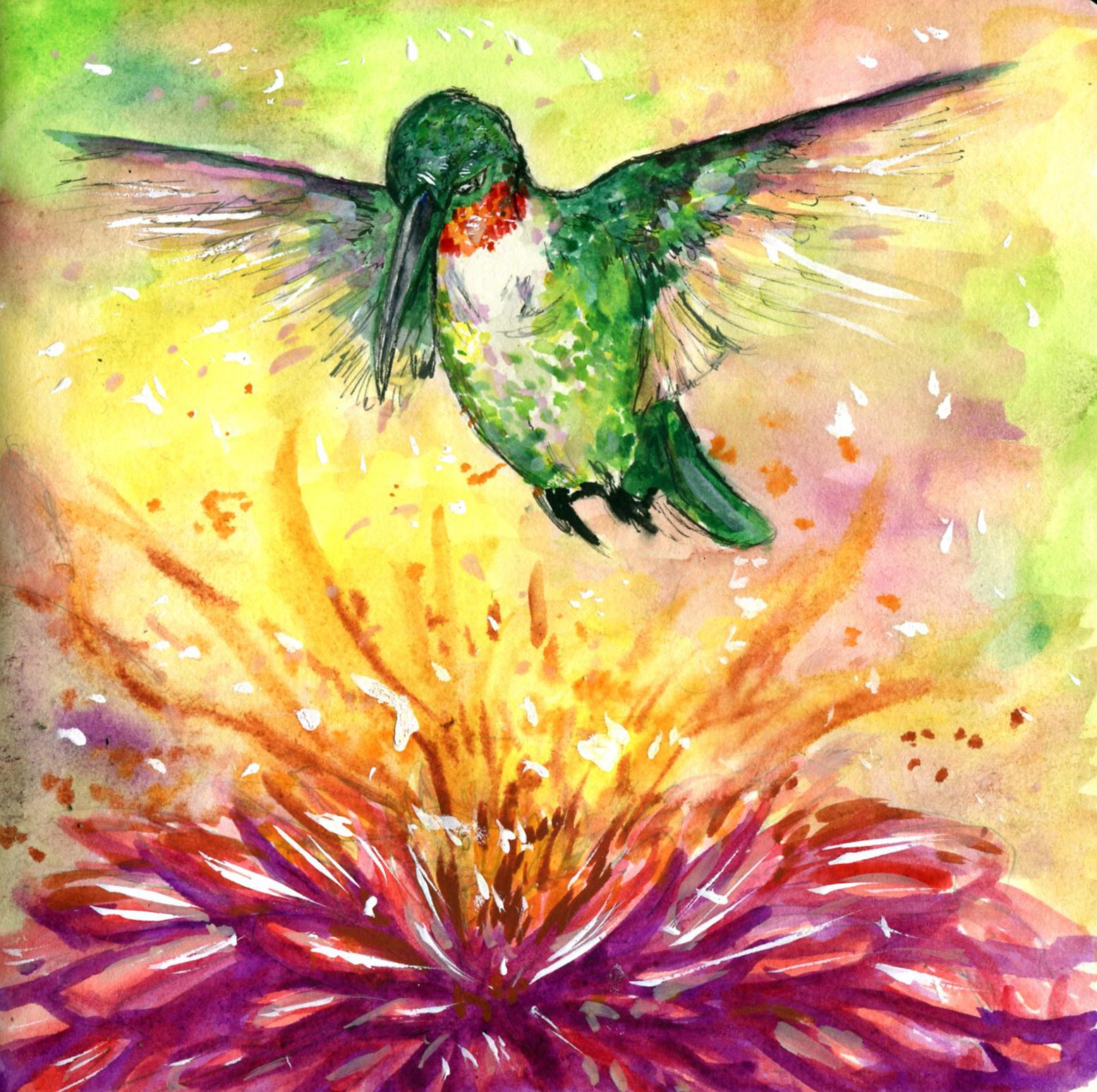 51. Ruby-throated Hummingbird