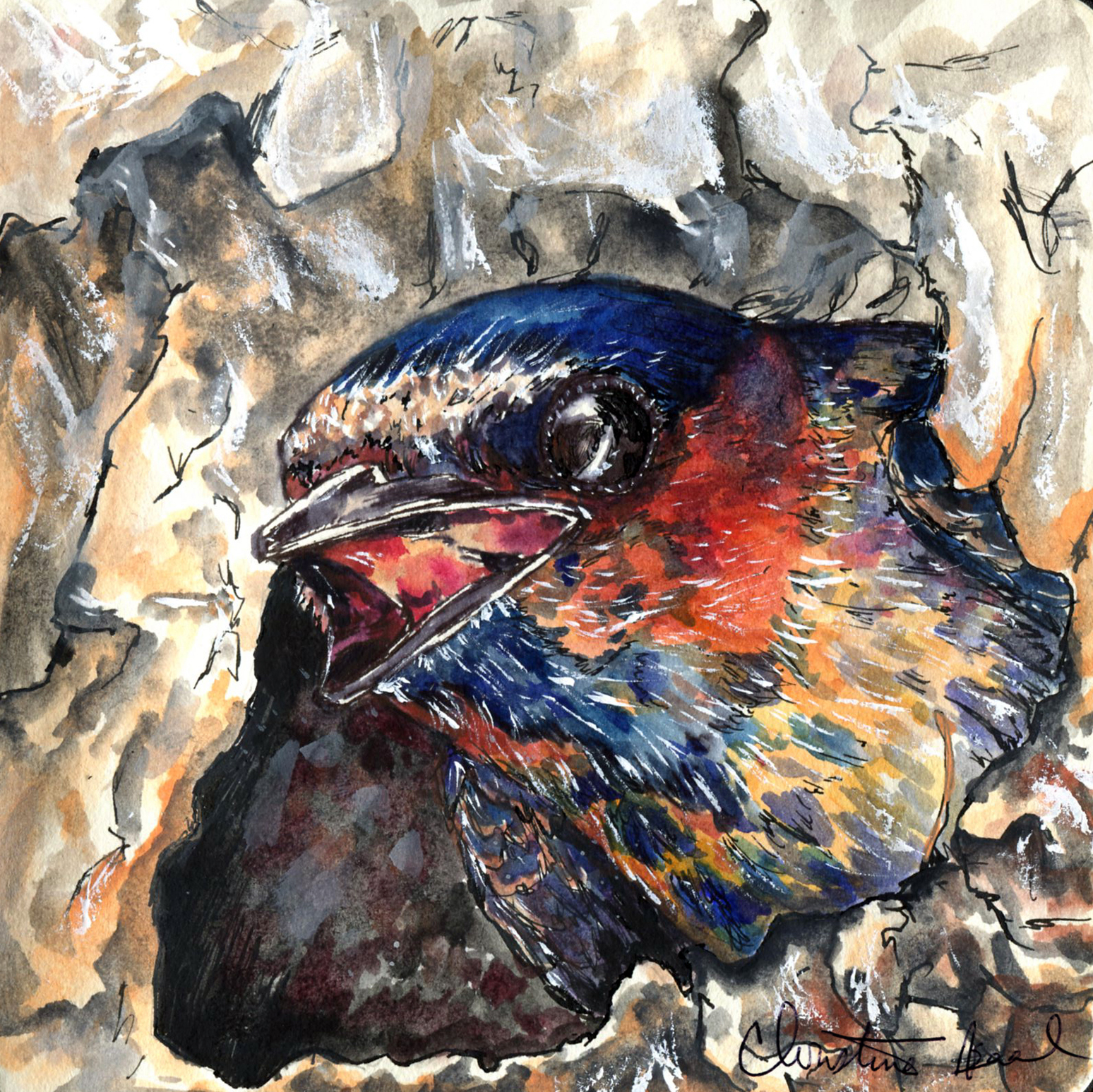 65. Cliff Swallow