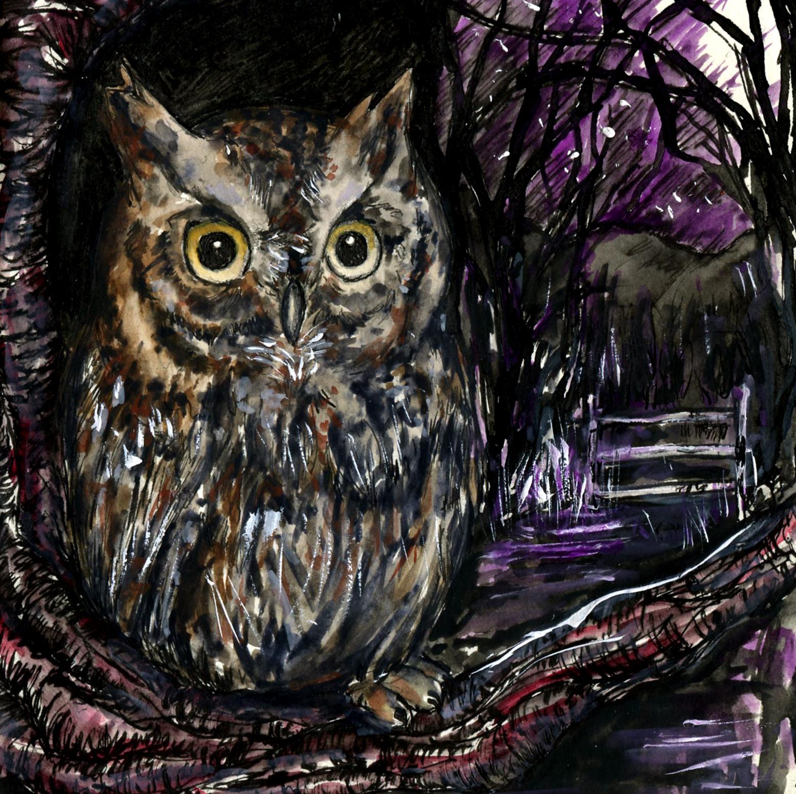 107. Eastern Screech Owl