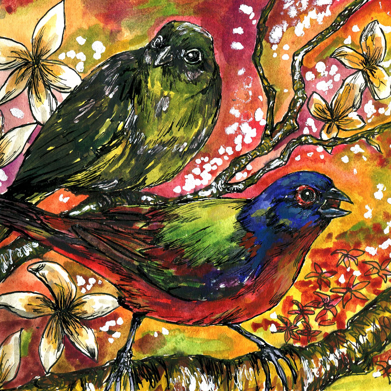 288. Painted Bunting