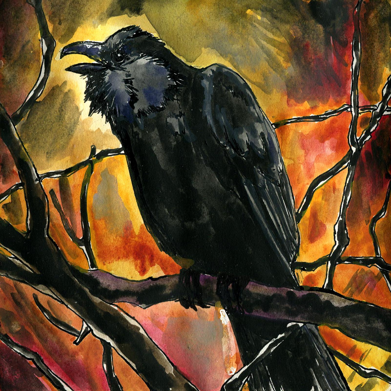 118. Fish Crow