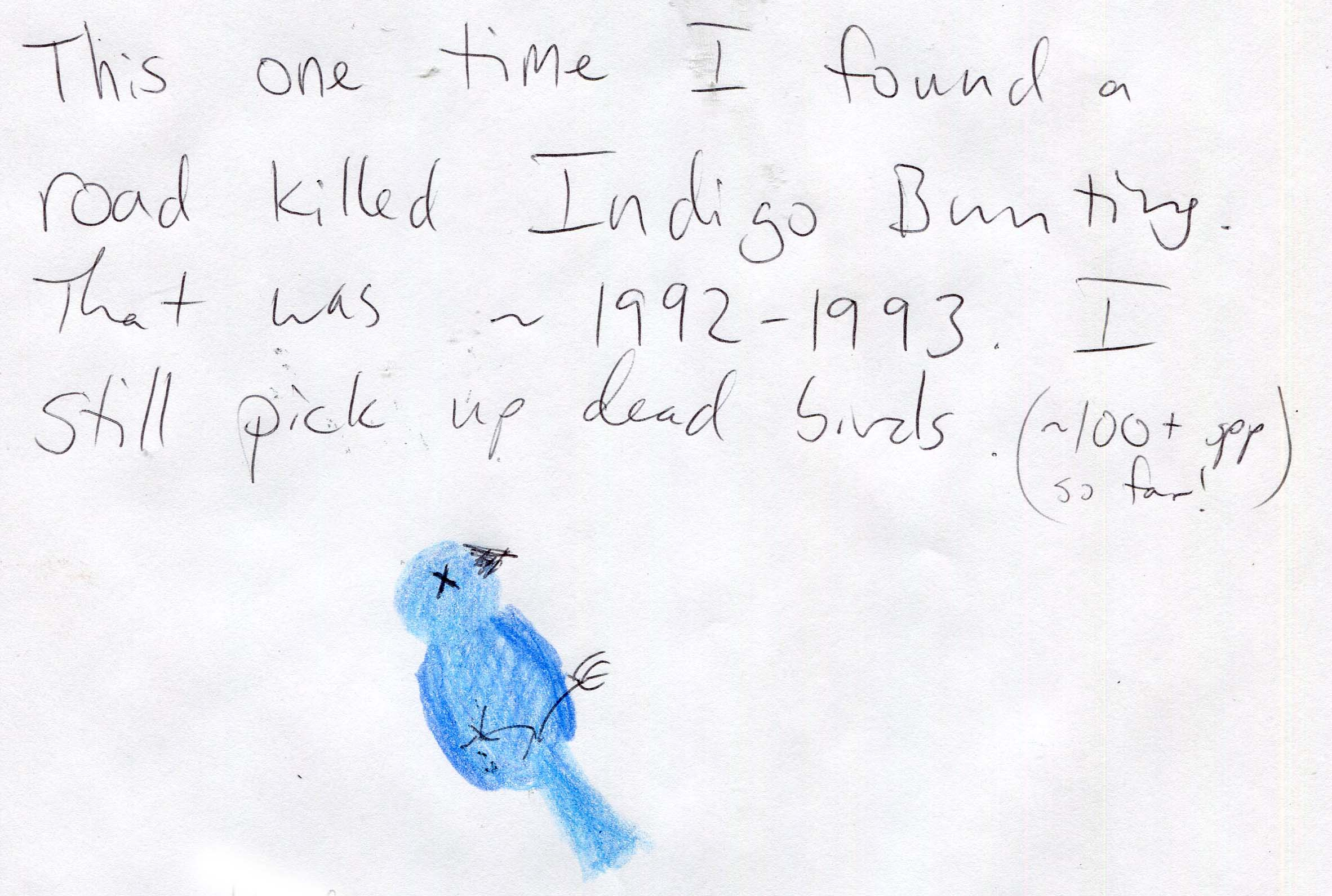 Dead Birds (for Science!)