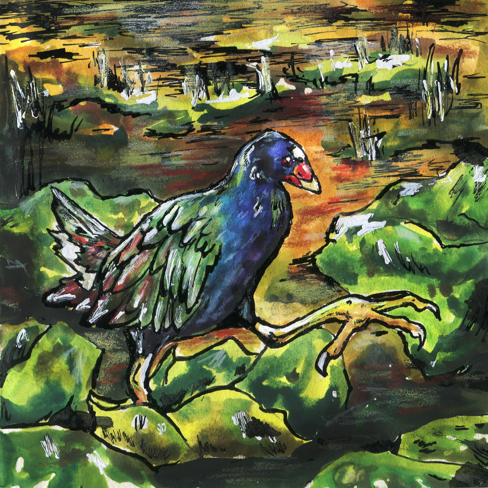 281. Purple Gallinule